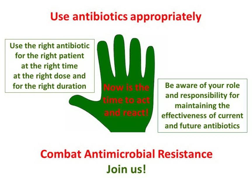 Antibiotics definitive.png.jpg
