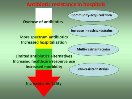 Antibiotic evolution.jpg