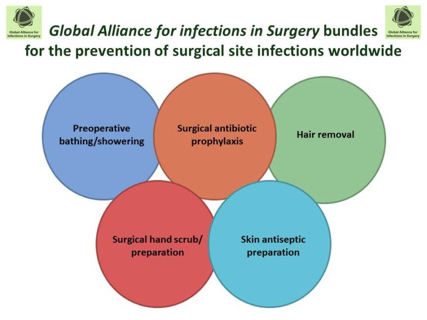 Global Alliance for Infections in Surgery17