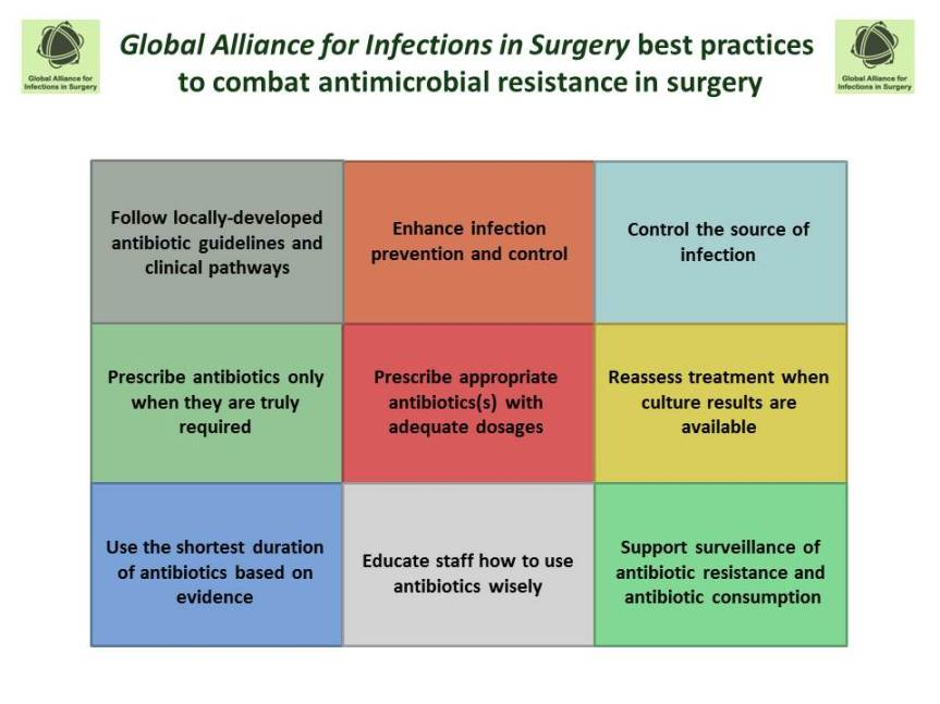 Global Alliance for Infections in Surgery1765