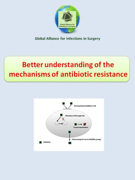 better understanding the mechanisms of antibiotivc resistance