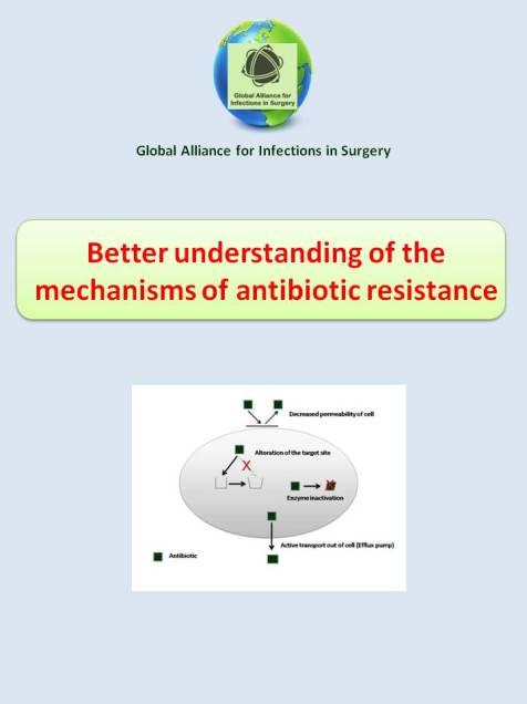 better understanding the mechanisms of antibiotivc resistance