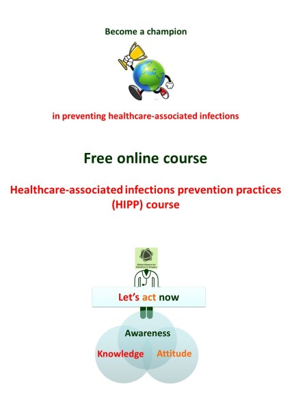 healthcare-associated infections prevention practices verticale