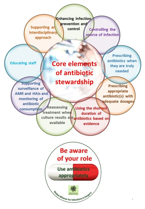 Core elements of antibiotic stewardshipNUOVO